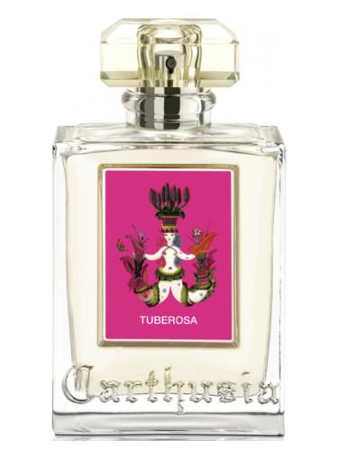 『チュベローザ(Tuberosa)』カルトゥージア(Carthusia)